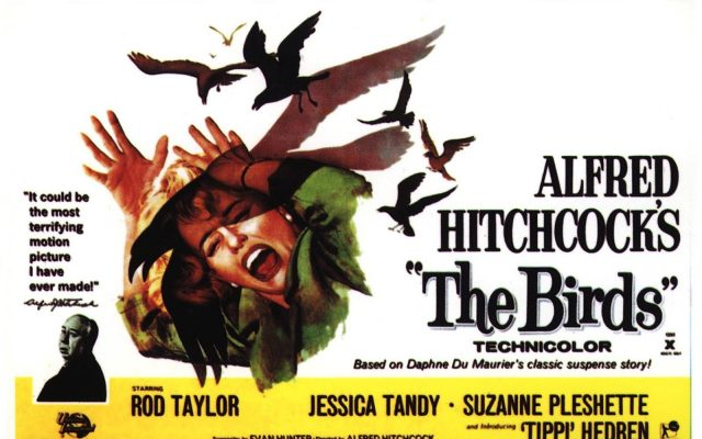 Poster for Alfred Hitchcock's 'The Birds'